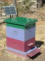 Солнечная батарея в пчеловодстве